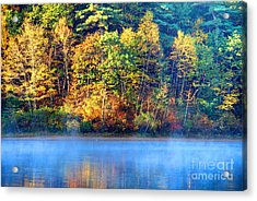Walden Pond Acrylic Print by Denis Tangney Jr
