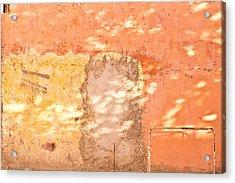 Weathered Wall Acrylic Print by Tom Gowanlock