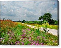 Wildflower Wonderland Acrylic Print by Lynn Bauer