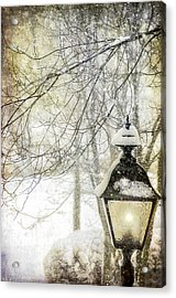 Winter Stillness Acrylic Print by Julie Palencia