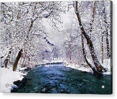 Winter White Acrylic Print by Jessica Jenney