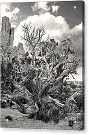 Sedona Arizona Acrylic Print by Gregory Dyer