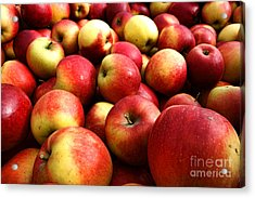 Apples Acrylic Print by Olivier Le Queinec