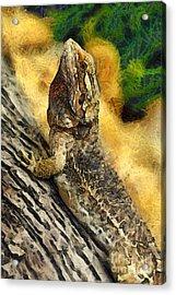 Bearded Dragon Acrylic Print by George Atsametakis