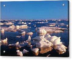 Canada, Manitoba, Churchill, Ice Floe Acrylic Print by Jaynes Gallery