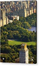 Central Park Acrylic Print by Brian Jannsen