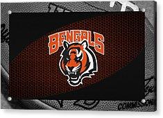 Cincinnati Bengals Acrylic Print by Joe Hamilton