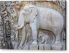 Elephant Sculpture At Mamallapuram  Acrylic Print by Robert Preston