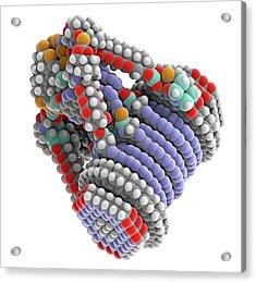 Fine-motion Molecular Controller Acrylic Print by Alfred Pasieka