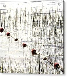 Floats Acrylic Print by Bernard Jaubert
