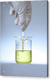 Home Urine Test Acrylic Print by Cordelia Molloy