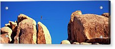 Low Angle View Of A Person Walking Acrylic Print by Panoramic Images