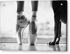 Shall We Dance Acrylic Print by Laura Fasulo