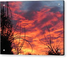 Sunset Skys Acrylic Print by Joyce Woodhouse