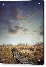 Wetland Walk Acrylic Print by Les Cunliffe