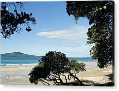 New Zealand Acrylic Print by Les Cunliffe