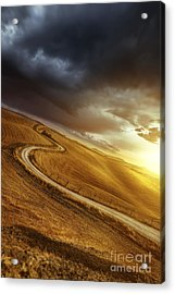 A Country Road In Field At Sunset Acrylic Print by Evgeny Kuklev