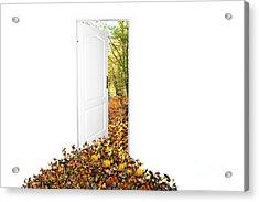 Door To New World Acrylic Print by Michal Bednarek