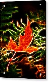 Fractal Maple Leaf Acrylic Print by Andre Faubert