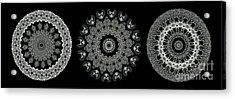 Kaleidoscope Ernst Haeckl Sea Life Series Black And White Set 2  Acrylic Print by Amy Cicconi