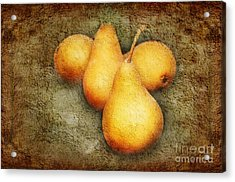 4 Little Pears Are We Acrylic Print by Andee Design
