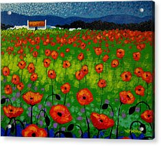 Poppy Field Acrylic Print by John  Nolan