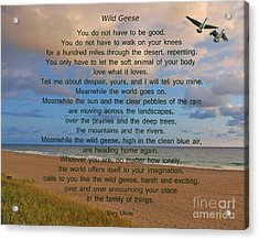 40- Wild Geese Mary Oliver Acrylic Print by Joseph Keane