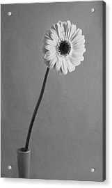 Black And White Beauty Acrylic Print by George Atsametakis