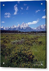 Grand Teton National Park Acrylic Print by Rafael Macia