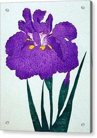 Japanese Flower Acrylic Print by Japanese School