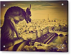 Paris Panorama France  Acrylic Print by Michal Bednarek