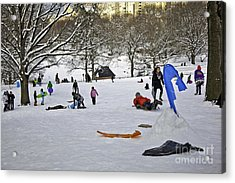 Snowboarding  In Central Park  2011 Acrylic Print by Madeline Ellis