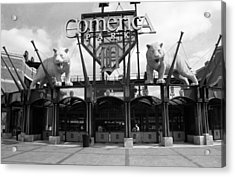 Comerica Park - Detroit Tigers Acrylic Print by Frank Romeo