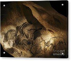 Stone-age Cave Paintings, Lascaux Acrylic Print by Javier Trueba/MSF
