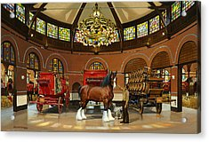 St. Louis Clydesdale Stables Acrylic Print by Don  Langeneckert