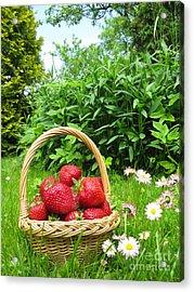 A Basket Of Strawberries Acrylic Print by Ausra Huntington nee Paulauskaite