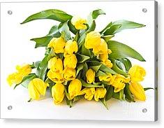 A Beautiful Yellow Tulips Acrylic Print by Boon Mee