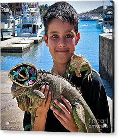 A Boy And His Iguanas Acrylic Print by Amy Fearn