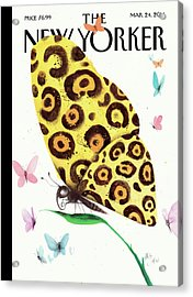 A Butterfly With A Cheetah Pattern Rests Acrylic Print by Ana Juan