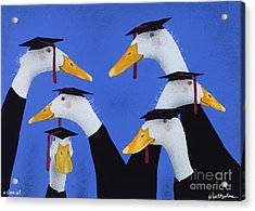 A Class Act... Acrylic Print by Will Bullas