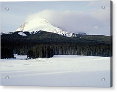 A Cold Wind Acrylic Print by Brent L Ander