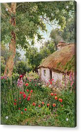 A Cottage Garden Acrylic Print by Tom Clough