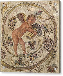 A Cupid Picking Grapes, Fragment Of Pavement From Carthage, Tunisia Mosaic Acrylic Print by Roman School