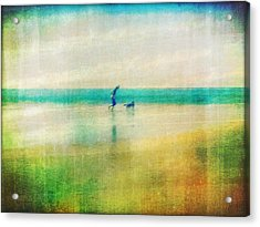 A Day By The Sea Acrylic Print by Suzy Norris