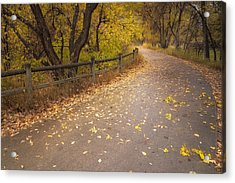 A Fall Walk Acrylic Print by Michael Van Beber