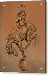 A Fine Balance Acrylic Print by Derrick Higgins