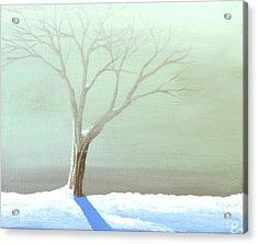 A Frosty Fog Acrylic Print by Erin Scott