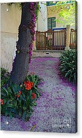 A Hint Of Spring Acrylic Print by Rene Triay Photography