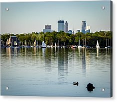 A Lake View Acrylic Print by Richard Chasin