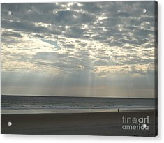 A Lone Visitor Acrylic Print by Marcia Lee Jones